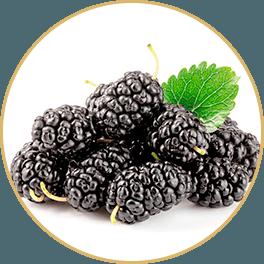 ChiChi_ChocolateBar_Change_Bar_Sang-Shen-Mulberry-Fruit_Circle