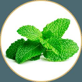 ChiChi_ChocolateBar_Ingredients_Achoo_Bar_Bo-He-Mint-Plant_Circle