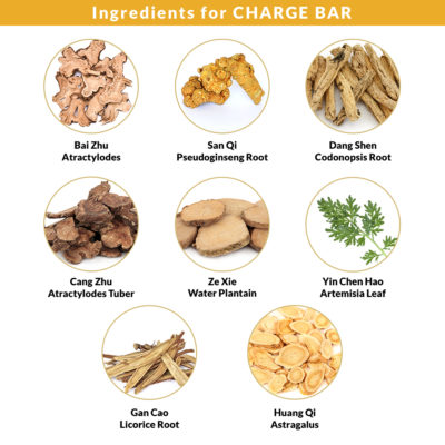 Ingredients for Charge Bar 3