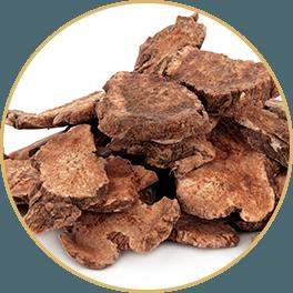 ChiChi_ChocolateBar_Ingredients_Charge_Bar_Cang-Zhu-Atractylodes-Tuber_Circle