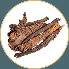 ChiChi Chocolate Ingredients Ligusticum Root Yang Bar Circle