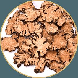 ChiChi_ChocolateBar_Ingredients_reCharge_Bar-Recovered_Chuan-Xiong-Sichuan-Lovage-Rhizome_Circle