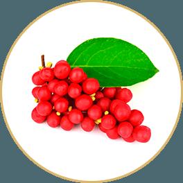 Chi Chi Chocolate - Ingredients Schisandra Berry Yin Bar